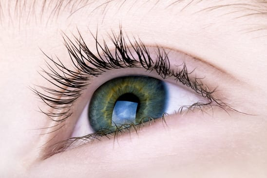 Eye twitch has many different causes - The Vision Gallery
